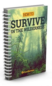 Wilderness survival ebook cover