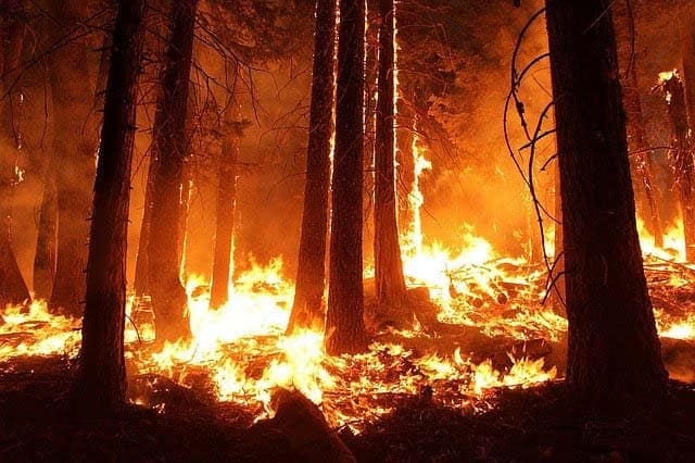 wildfire and heat waves