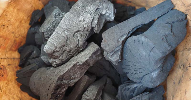 charcoal vs. activated charcoal