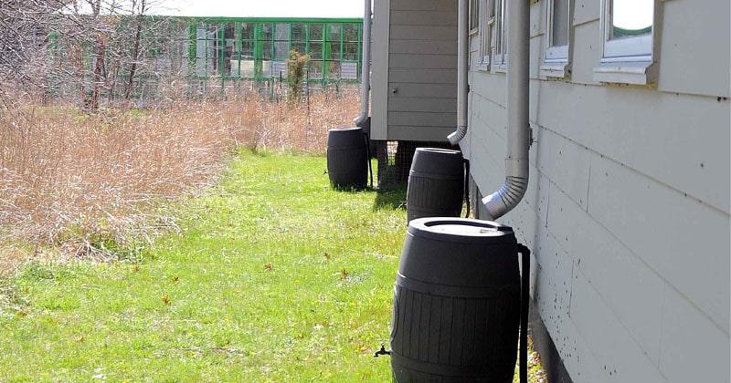 free rainwater barrels